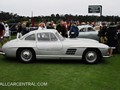 14-Mercedes-Benz_300_SL_Gullwing_1955_PBC0451_PB_concours_2011